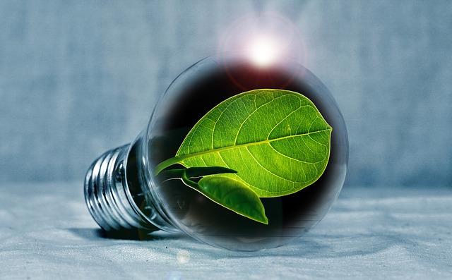 התייעלות אנרגטית